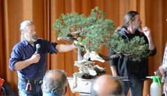 European Bonsai San Show 2013