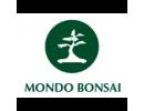 Mondo Bonsai, Fiera Millenaria di Gonzaga, MN